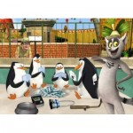 Puzzle  Alexander-4365 Pinguine aus Madagascar
