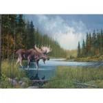 Puzzle  Cobble-Hill-51841 Moose Lake