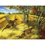 Puzzle  Cobble-Hill-52090 XXL Teile - Linda Picken - Ring-necked Pheasants