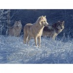 Puzzle  Cobble-Hill-52100 XXL Teile - Daniel Smith - White Gold Wolves
