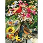 Puzzle  Cobble-Hill-52101 XXL Teile - Greg Giordano - Garden Birds