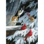 Puzzle  Cobble-Hill-57171 Vogelbeobachter
