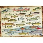 Puzzle  Cobble-Hill-57193 Die Süßwasserfische Nordamerikas