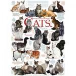 Puzzle   Die Katzen