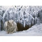 Puzzle   Robert Bateman - Dozing Lynx
