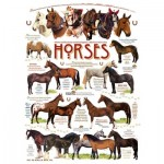 Puzzle   Robert May - Horse Quotes