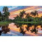 Puzzle  Tactic-53868 Botanic Garden