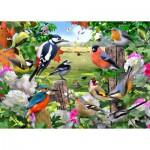 Puzzle  Jumbo-11025 Vögel aller Jahreszeiten