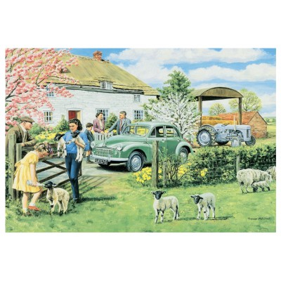 Puzzle Jumbo-11072 Trevor Mitchell: Spring Lambs