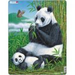 Larsen-D5 Rahmenpuzzle - Panda