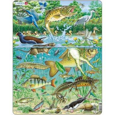 Larsen-FH19 Rahmenpuzzle - Tiere am Teich