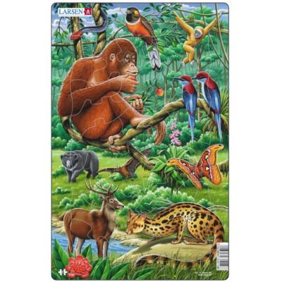 Larsen-H21-2 Rahmenpuzzle - Dschungeltiere