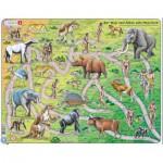 Larsen-HL3-1-DE Rahmenpuzzle - Der Weg vom Affen zum Menschen