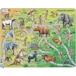 Larsen-HL3-2-FR Rahmenpuzzle - Der Weg vom Affen zum Menschen (auf Französisch)