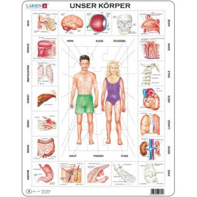 Larsen-OB1-DE Rahmenpuzzle - Unser Körper
