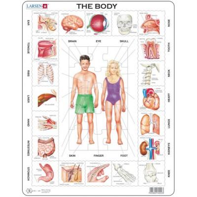 Larsen-OB1-FR Rahmenpuzzle - Der Körper (auf Französich)