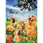 Puzzle  Noris-6060-31083 3D Effekt - Hunde