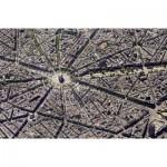 Puzzle  Piatnik-5376 Skyview Paris