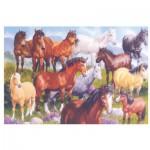 Puzzle  James-Hamilton-NP1/1058 British Native Ponies