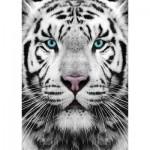 Puzzle  Gold-Puzzle-61512 Sibirischer Tiger