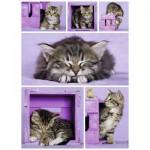 Puzzle  Nathan-87227 Kleine Kätzchen