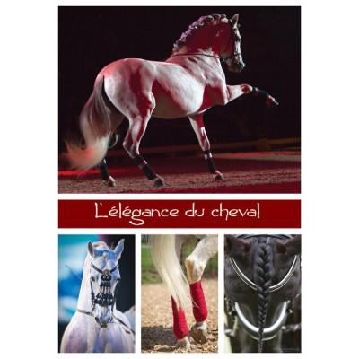Puzzle Nathan-87485 Die Eleganz des Pferdes
