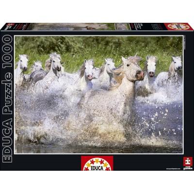 Puzzle Educa-15988 Weiße Camargue-Pferde