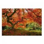 Puzzle  Educa-16310 Japanischer Garten