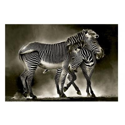 Puzzle Educa-16359 Zebras
