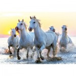 Puzzle  Educa-17105 White Horses at Sunset