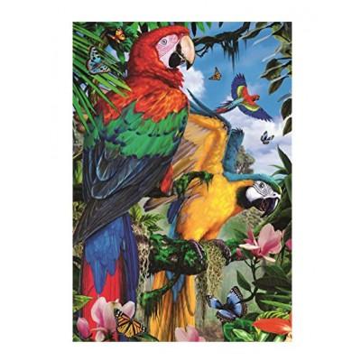 Puzzle Jumbo-18330 Schöne Papageien