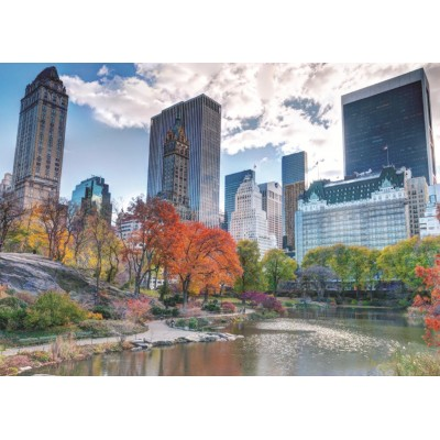 Puzzle Jumbo-18350 New York, Central Park