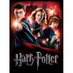 Poster Puzzle - Hogwarts Schule, Harry Potter