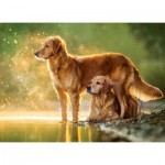Puzzle  Castorland-018253 Best Friends