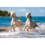 Puzzle  Castorland-102433 Camargue-Pferde