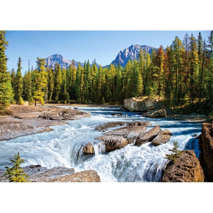 Fluss Athabasca, Jasper Nationalpark, Kanada