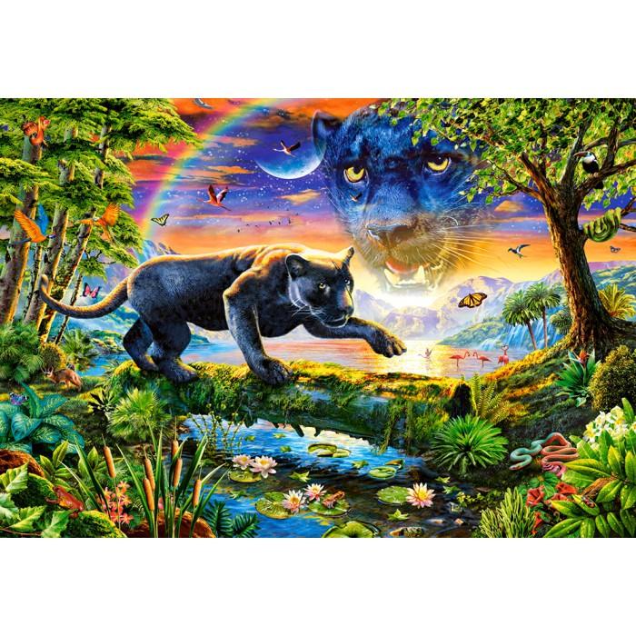 Panther im Sonnenuntergang