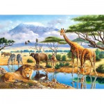 Castorland-21031 2 Puzzles - Tiere in Afrika