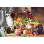 Puzzle  Castorland-300143 Stillleben mit Früchten und Kakadu