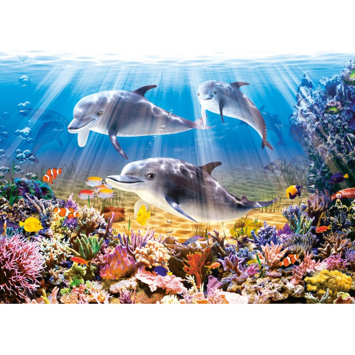 Die Welt der Delfine