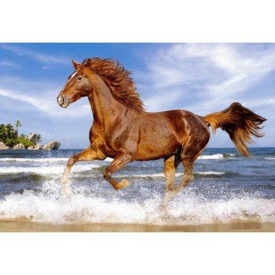 Puzzle Castorland-51175 Pferd am Strand