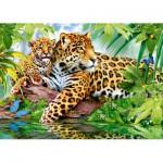 Puzzle  Castorland-52011 Jaguare am Wasser