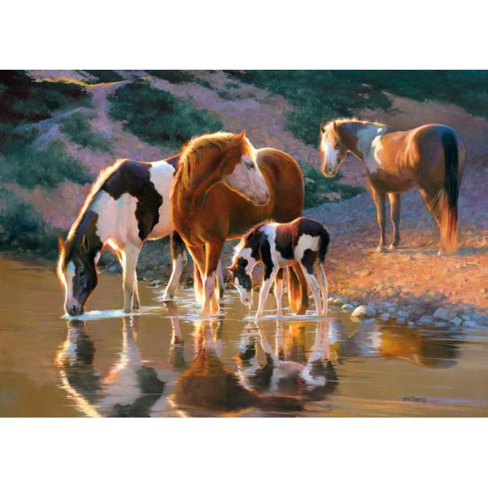 Pferde am Fuss