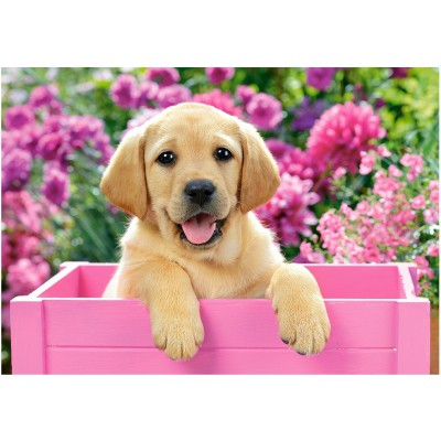 Puzzle Castorland-52226 Labrador-Welpe in pinker Box