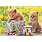 Puzzle  Castorland-52356 Tea Time