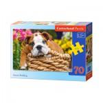 Puzzle  Castorland-B-007134 Niedliche Bulldogge