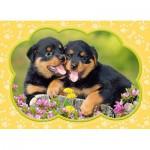 Castorland-B-035205 Minipuzzle - Rottweilerwelpen