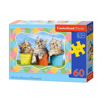 Puzzle Castorland-B-06762 Sibirische Kätzchen in Blumentöpfen