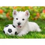 Puzzle  Castorland-B-06823 Weißer Terrier mit Fußball
