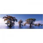 Puzzle  Heye-29607 Bald Cypresses